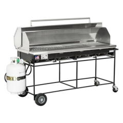 Rental store for Grill, Propane, Deluxe in Grand Rapids MI