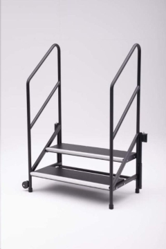 Rental store for Stage, Steps w  Handles in Grand Rapids MI